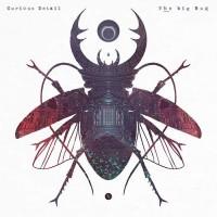 Curious Detail - The Big Bug