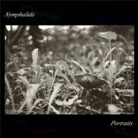 Nymphalida - Portraits