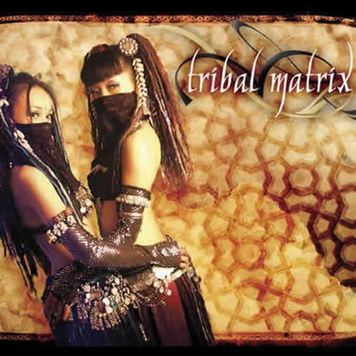 Compilation: Tribal Matrix