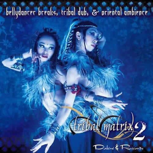 Compilation: Tribal Matrix 2