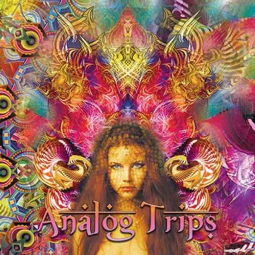 Compilation: Analog Trips