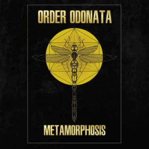 Compilation: Order Odonata - Metamorphosis
