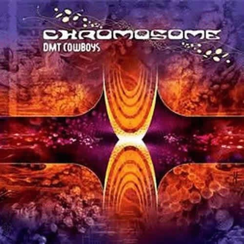 Chromosome - DMT Cowboys