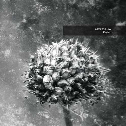 Aes Dana - Pollen (Remastered)
