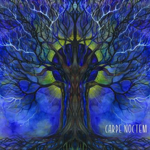 Compilation: Carpe Noctem