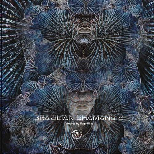 Compilation: Brazilian Shamans 2