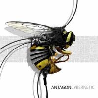 Antagon - Cybernetic