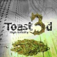 Toast3d - High Infinity
