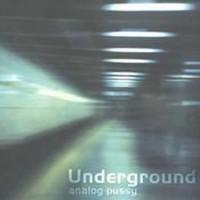 Analog Pussy - Underground
