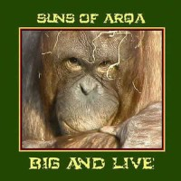 Suns of Arqa - Big and Live