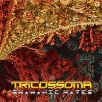 Tricossoma - Shamanic Waves