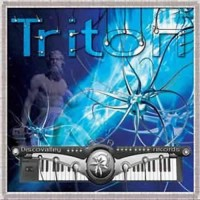 Compilation: Triton