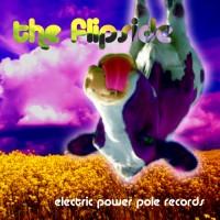 Compilation: The Flip Side