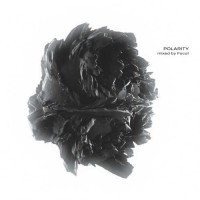 Compilation: POLARITY - mixed by Focal (2CDs)