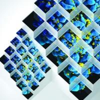 Bluetech - Liquid Geometries In Dub