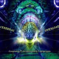 Compilation: Cerebral Overload