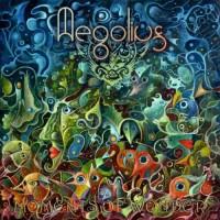 Aegolius - Moments Of Wonder