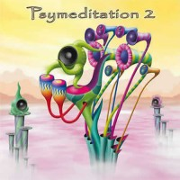 Compilation: Psymeditation 2 - Compiled by Chris Organic