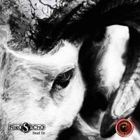 Niko S Echo - Head On