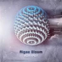 Algae Bloom - Daypsy