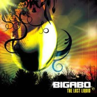 Bigabo - The Last Liquid