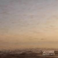 Enrico Coniglio - Salicornie Topofonie Vol. 2