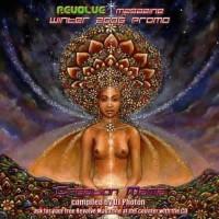Compilation: Revolve Magazin Winter 2006 + CD
