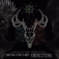 Compilation: Shamanic Meeting (2CDs)