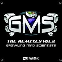 GMS - The Remixes Vol 2