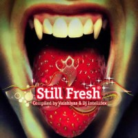 Compilation: Still Fresh