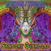 ESP - Sensory Overload