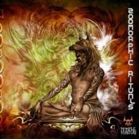 Compilation: Zoomorphic Rituals