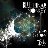 Blue Lunar Monkey - Here and Now