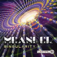 Meander - Singularity