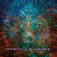 Compilation: Prismatic Symbiosis