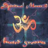 Compilation: Spiritual Moves 2 - Busted Grooves