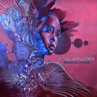Echo Wanderer - Moving Through Dub