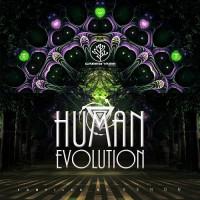 Compilation: Human Evolution