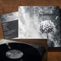 Aes Dana - Pollen (Remastered) (2 Vinyl LP)