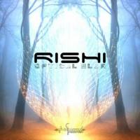 Rishi - Optical Blur