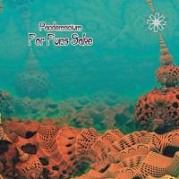 Pandemonium - For Funs Sake