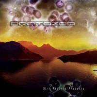 Compilation: Protozoa